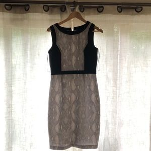 Beautiful dress! Size 6. From Calvin Klein